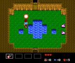Startropics NES 016