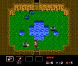 Startropics NES 025