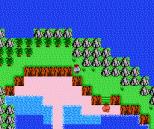 Startropics NES 037