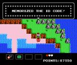 Startropics NES 038