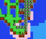 Startropics NES 046