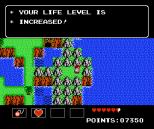 Startropics NES 051