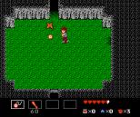 Startropics NES 068