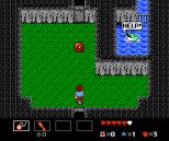 Startropics NES 071