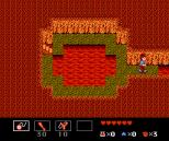 Startropics NES 113