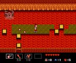 Startropics NES 116