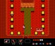 Startropics NES 119