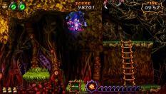 Ultimate Ghosts N Goblins PSP 57