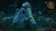 Witcher 3 Achievement 05