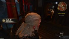 Witcher 3 Achievement 06