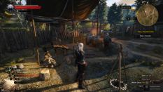 Witcher 3 Achievement 08