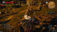 Witcher 3 Achievement 09