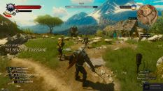 Witcher 3 Achievement 10