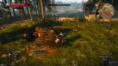 Witcher 3 Achievement 14