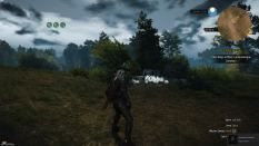 Witcher 3 Achievement 18