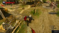 Witcher 3 Achievement 20