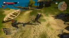 Witcher 3 Achievement 21