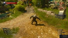 Witcher 3 Achievement 22