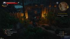 Witcher 3 Achievement 28