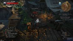 Witcher 3 Achievement 29