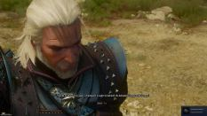 Witcher 3 Achievement 31