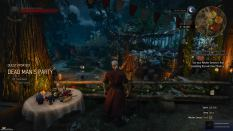 Witcher 3 Achievement 33