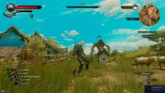 Witcher 3 Achievement 35