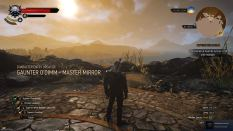 Witcher 3 Achievement 37