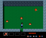 Zoda's Revenge - Startropics 2 NES 018