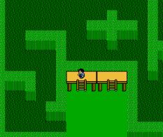 Zoda's Revenge - Startropics 2 NES 076