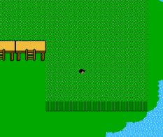 Zoda's Revenge - Startropics 2 NES 077