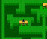 Zoda's Revenge - Startropics 2 NES 095
