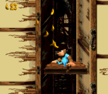 Donkey Kong Country 3 - Dixie Kong's Double Trouble SNES 081