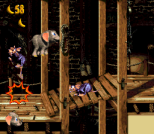 Donkey Kong Country 3 - Dixie Kong's Double Trouble SNES 082