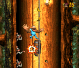 Donkey Kong Country 3 - Dixie Kong's Double Trouble SNES 107