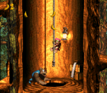 Donkey Kong Country 3 - Dixie Kong's Double Trouble SNES 113