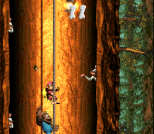 Donkey Kong Country 3 - Dixie Kong's Double Trouble SNES 116