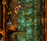 Donkey Kong Country 3 - Dixie Kong's Double Trouble SNES 117