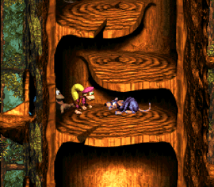 Donkey Kong Country 3 - Dixie Kong's Double Trouble SNES 119