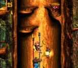 Donkey Kong Country 3 - Dixie Kong's Double Trouble SNES 123