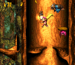 Donkey Kong Country 3 - Dixie Kong's Double Trouble SNES 124