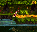 Donkey Kong Country 3 - Dixie Kong's Double Trouble SNES 138