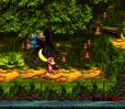 Donkey Kong Country 3 - Dixie Kong's Double Trouble SNES 144