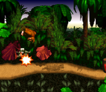 Donkey Kong Country SNES 006