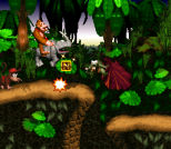 Donkey Kong Country SNES 014