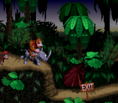 Donkey Kong Country SNES 021
