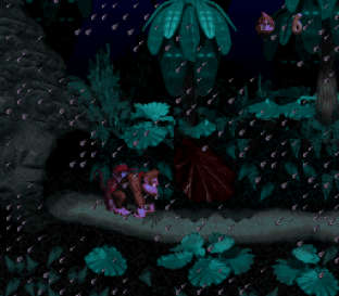 Donkey Kong Country SNES 023