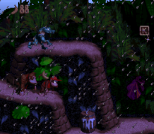 Donkey Kong Country SNES 024