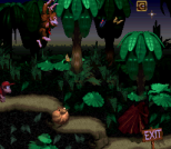 Donkey Kong Country SNES 030