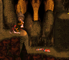 Donkey Kong Country SNES 043